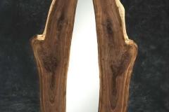 mirror zap